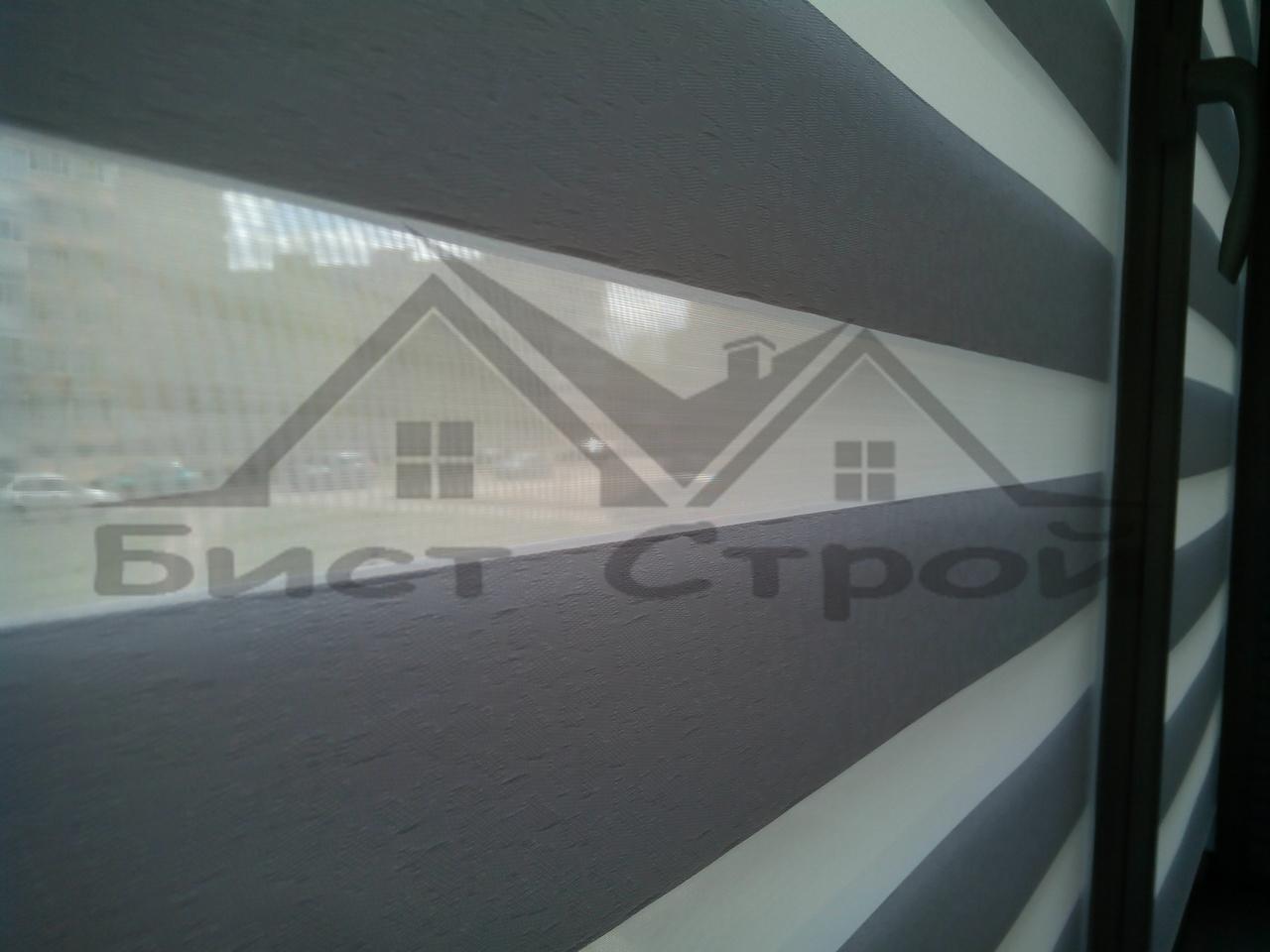 Зебра вид через штору